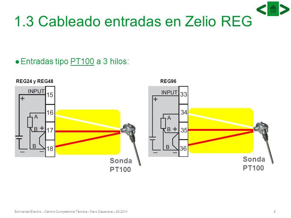 8Schneider Electric - Centro Competencia Técnica - Marc Casanova – 09.2011 1.3 Cableado entradas en Zelio REG Sonda PT100 Entradas tipo PT100 a 3 hilo