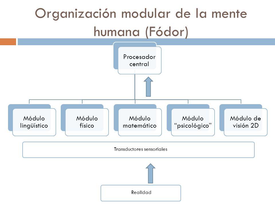 1 - ¿Qué es el sistema de conocimiento lingüístico? Principios y parámetros Límite de componentes con a. Ver ejemploVer ejemplo Uso de pronombres refl
