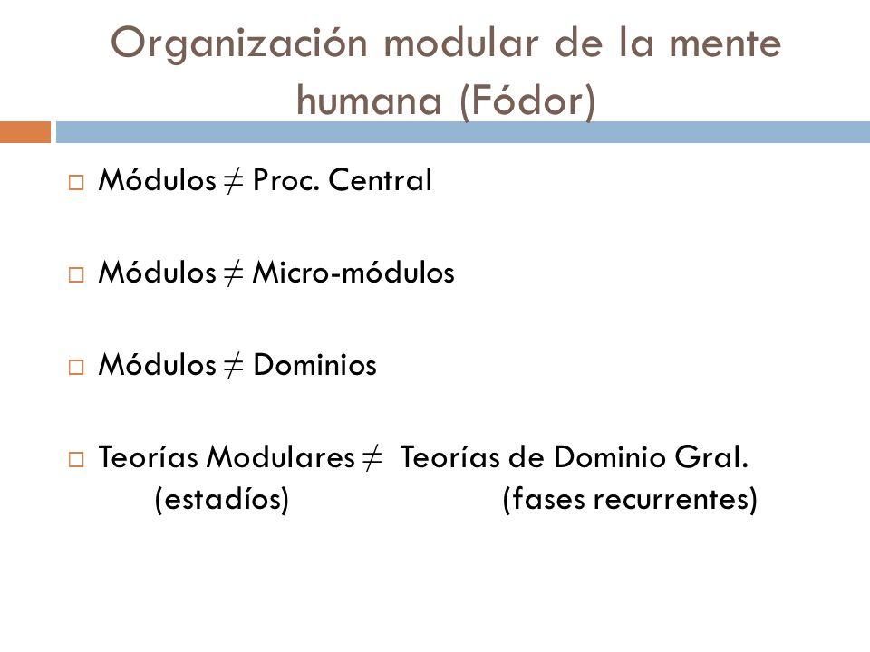Organización modular de la mente humana (Fódor) Procesador central Módulo lingüístico Módulo físico Módulo matemático Módulo psicológico Módulo de vis