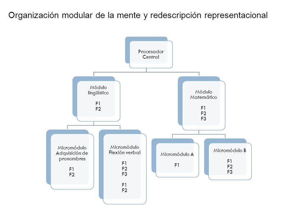Teorías sobre la adquisición del lenguaje ConductismoConstructivismoInnatismo Teorías de dominio generalTeoría de dominios específicos Almacenamiento