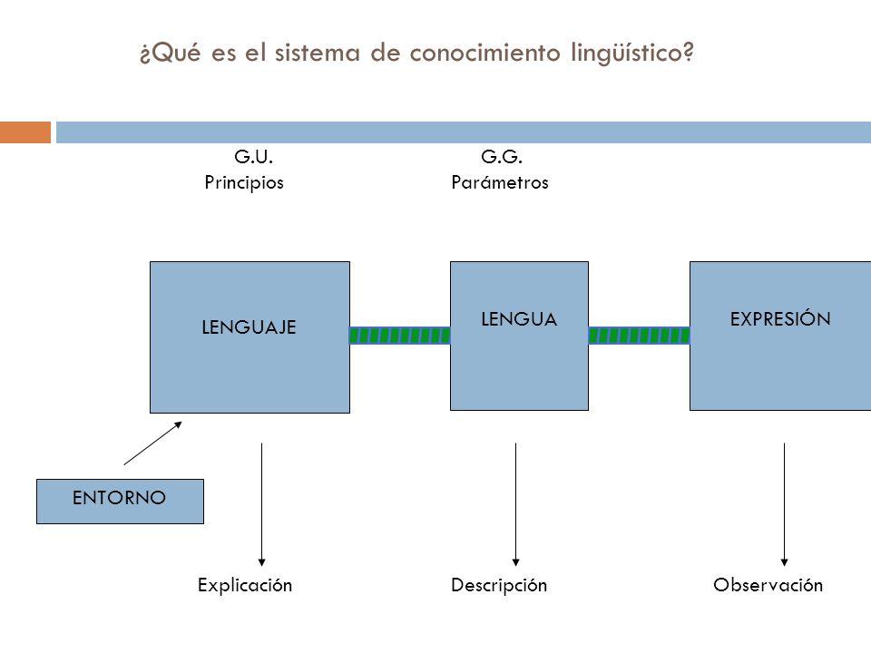 Procesador Central Módulo lingüístico F1 F2 Micromódulo Adquisición de pronombres F1 F2 Micromódulo Flexión verbal F1 F2 F3 F1 F2 Módulo Matemático F1