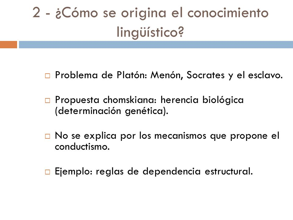 Problemas (interrogantes) 1 - ¿Qué es el sistema de conocimiento lingüístico? 2 - ¿Cómo se origina el conocimiento lingüístico? 3 - ¿Cómo se utiliza e