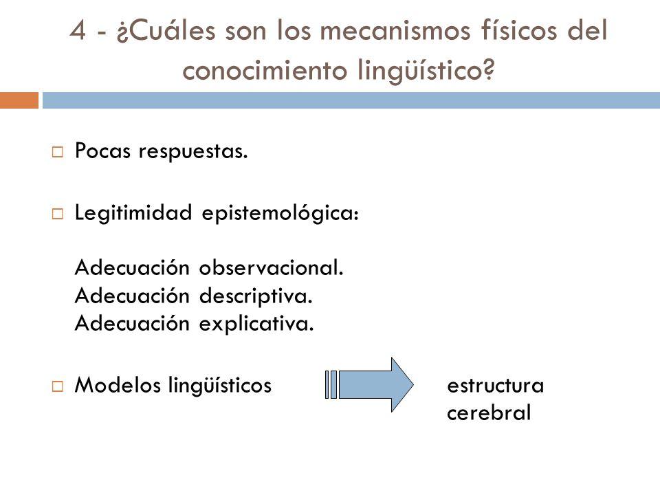 4 - ¿Cuáles son los mecanismos físicos del conocimiento lingüístico.