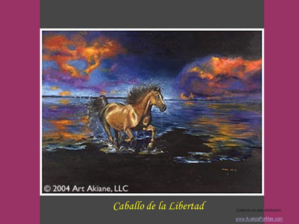 La Creación Colabora con esta distribución: www.AvanzaPorMas.com
