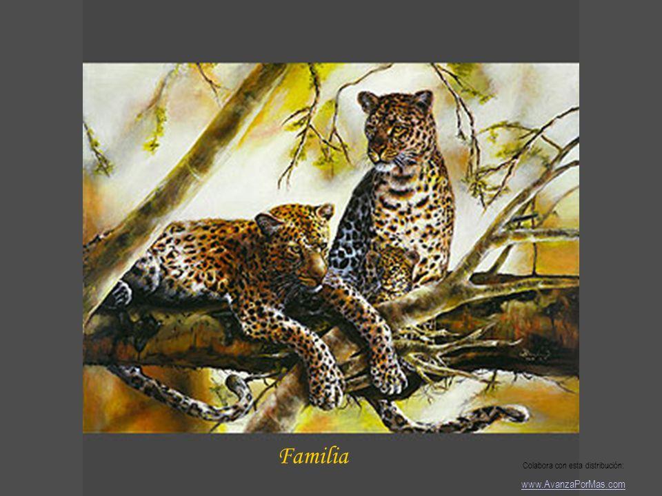 Fe Colabora con esta distribución: www.AvanzaPorMas.com