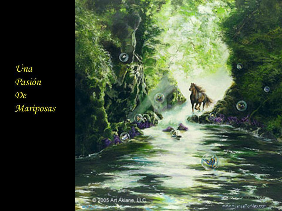 Cisne De la Noche Colabora con esta distribución: www.AvanzaPorMas.com