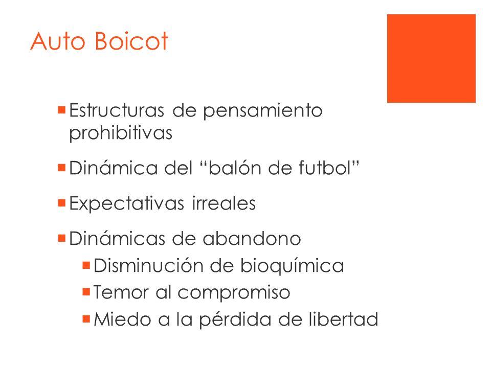 Auto Boicot Estructuras de pensamiento prohibitivas Dinámica del balón de futbol Expectativas irreales Dinámicas de abandono Disminución de bioquímica