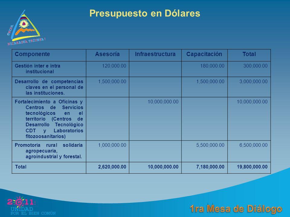 ComponenteAsesoríaInfraestructuraCapacitaciónTotal Gestión inter e intra institucional 120,000.00180,000.00300,000.00 Desarrollo de competencias claves en el personal de las instituciones.