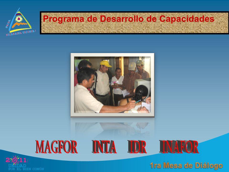 Programa de Desarrollo de Capacidades