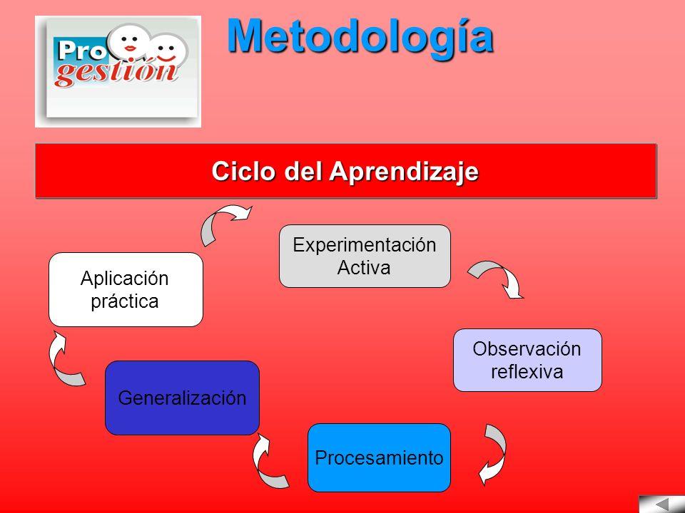 Experimentación Activa Observación reflexiva Procesamiento Generalización Aplicación práctica Metodología Ciclo del Aprendizaje Ciclo del Aprendizaje