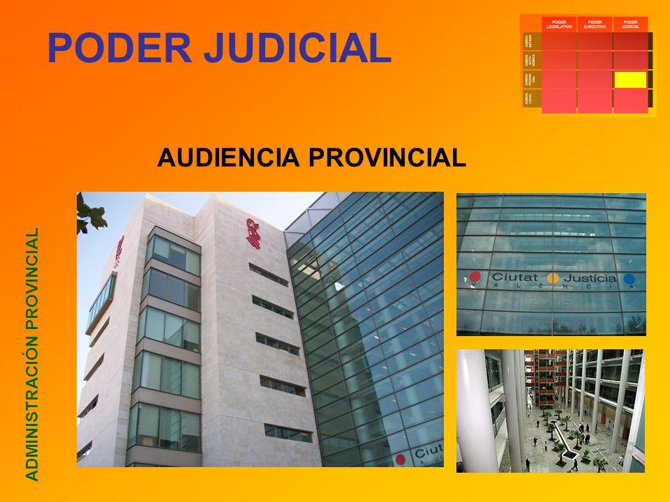 PODER JUDICIAL ADMINISTRACIÓN PROVINCIAL AUDIENCIA PROVINCIAL