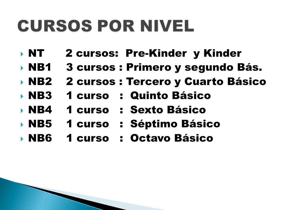 NT 2 cursos: Pre-Kinder y Kinder NB1 3 cursos : Primero y segundo Bás. NB2 2 cursos : Tercero y Cuarto Básico NB3 1 curso : Quinto Básico NB4 1 curso