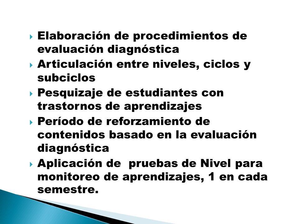 Elaboración de procedimientos de evaluación diagnóstica Articulación entre niveles, ciclos y subciclos Pesquizaje de estudiantes con trastornos de apr