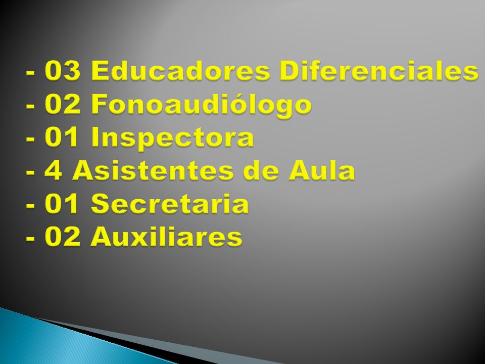 Confeccionar Plan de Acción período Marzo a Diciembre de 2013 con sus acciones, medios y recursos.