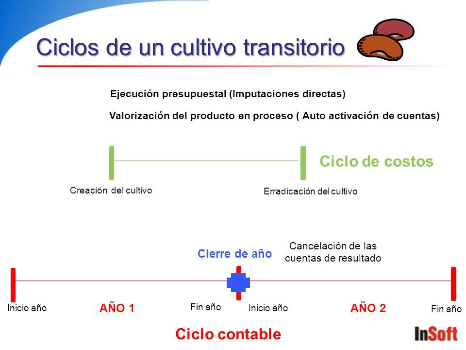 Ciclos de un cultivo transitorio AÑO 1AÑO 2 Inicio año Fin año Inicio año Fin año Creación del cultivo Erradicación del cultivo Ciclo contable Ciclo d