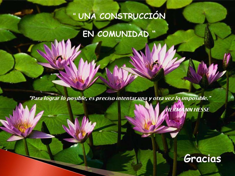 UNA CONSTRUCCIÓN EN COMUNIDAD Para lograr lo posible, es preciso intentar una y otra vez lo imposible. HERMANN HESSE Gracias