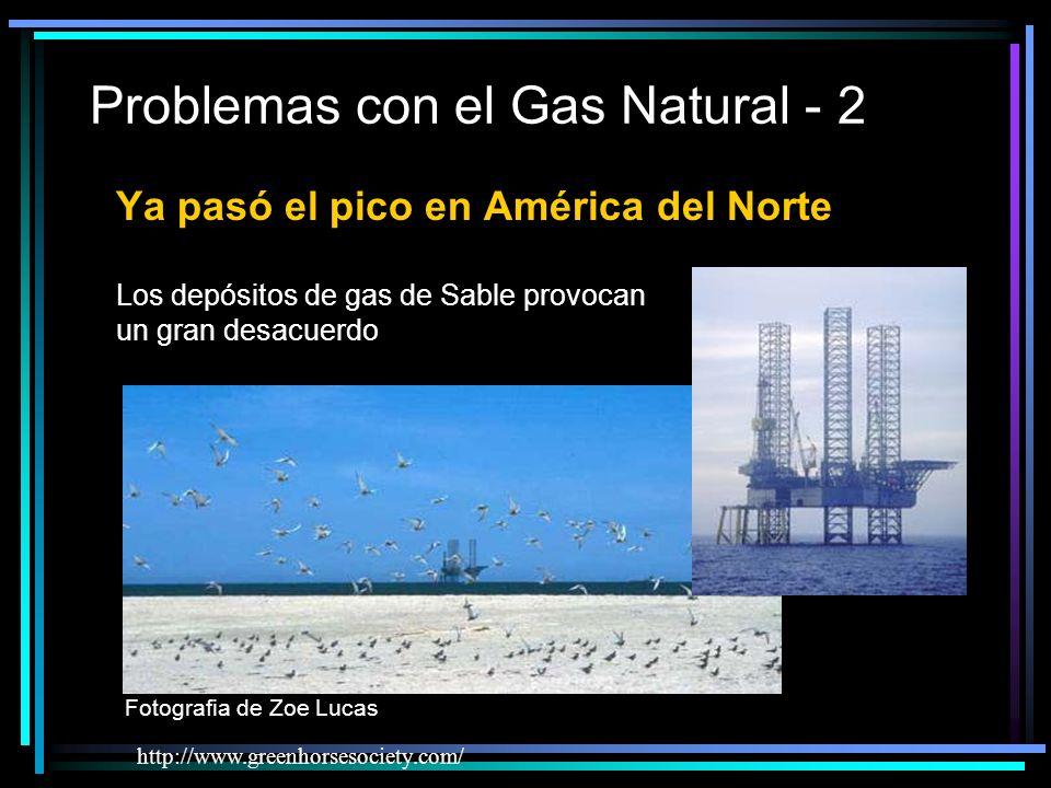 Problemas con el Gas Natural - 2 http://www.greenhorsesociety.com/ Ya pasó el pico en América del Norte Los depósitos de gas de Sable provocan un gran desacuerdo Fotografia de Zoe Lucas