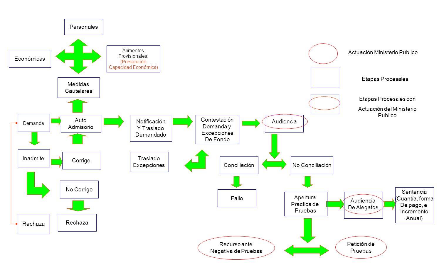 Personales Económicas Alimentos Provisionales. (Presunción Capacidad Económica) Corrige Medidas Cautelares Auto Admisorio No Corrige Rechaza Demanda N