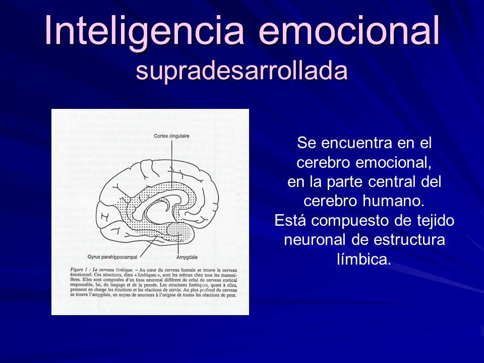 22/10/08 Si puedes verla girando en el sentido de las manecillas del reloj, estás utilizando el hemisferio derecho de tu cerebro. Si logras ver la fig