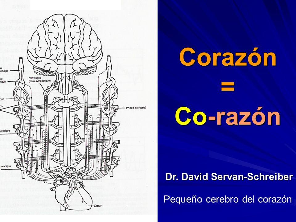 Mayor percepción y sensibilidad -F-F-F-Fisiológica -A-A-A-Afectiva -E-E-E-Emocional -C-C-C-Cognitiva -S-S-S-Social -E-E-E-Estetica -E-E-E-Ecologica -É