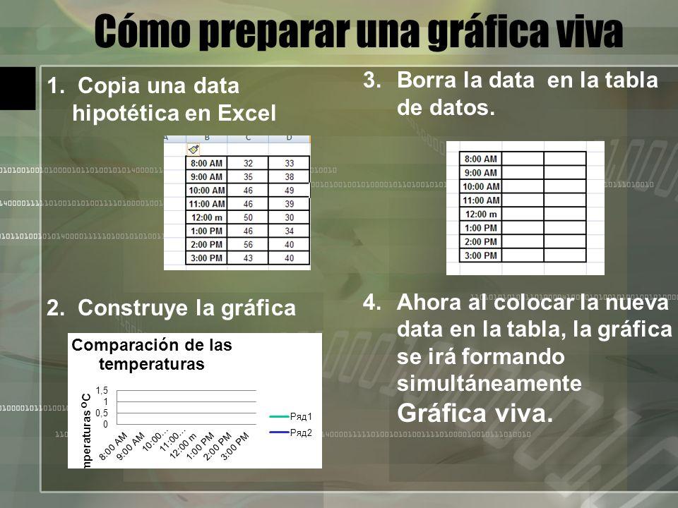 Cómo preparar una gráfica viva 1. Copia una data hipotética en Excel 2.