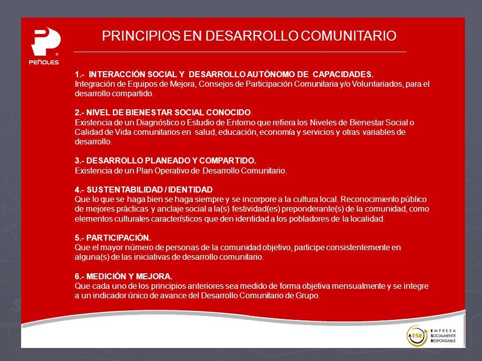 PRINCIPIOS EN DESARROLLO COMUNITARIO 1.- INTERACCIÓN SOCIAL Y DESARROLLO AUTÓNOMO DE CAPACIDADES.