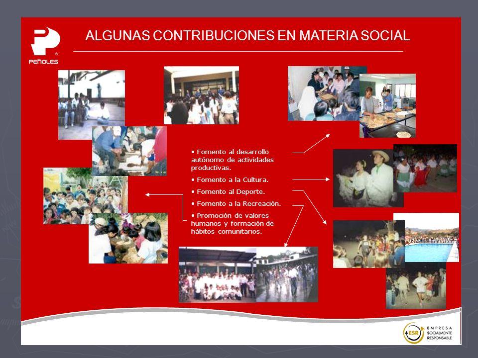 ALGUNAS CONTRIBUCIONES EN MATERIA SOCIAL Fomento al desarrollo autónomo de actividades productivas.