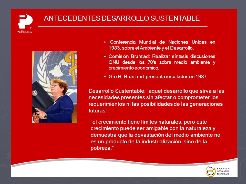 ANTECEDENTES DESARROLLO SUSTENTABLE Conferencia Mundial de Naciones Unidas en 1983, sobre el Ambiente y el Desarrollo.