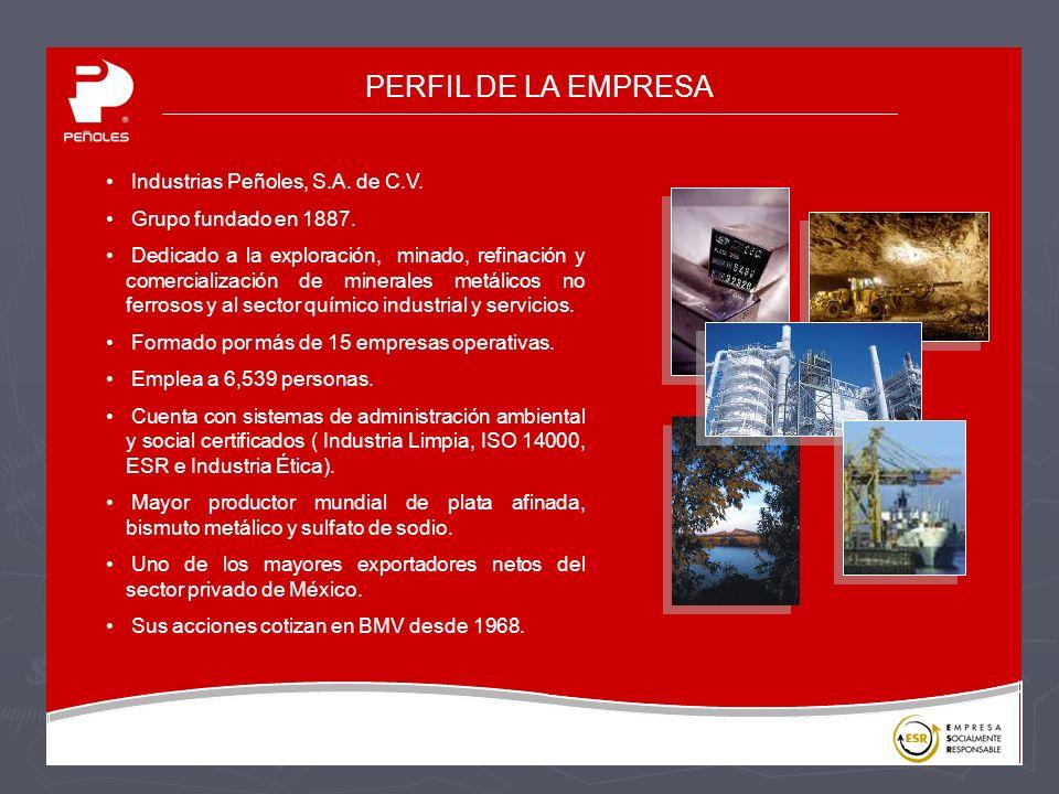 PERFIL DE LA EMPRESA Industrias Peñoles, S.A.de C.V.