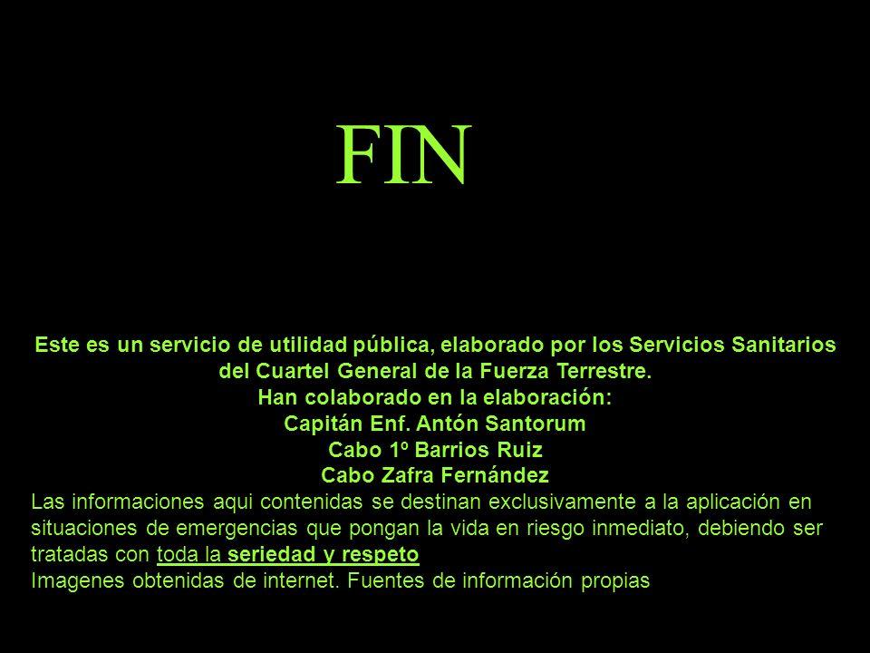 FIN Este es un servicio de utilidad pública, elaborado por los Servicios Sanitarios del Cuartel General de la Fuerza Terrestre. Han colaborado en la e