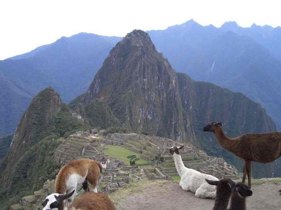 En el universo nada es imposible nos dicen los hermanos Bogdanov Entonces, tengamos confianza en el genio humano; hay, quizás no muy lejos, otro sol, otro planeta, donde otros hijos del sol construyen Machu Picchu