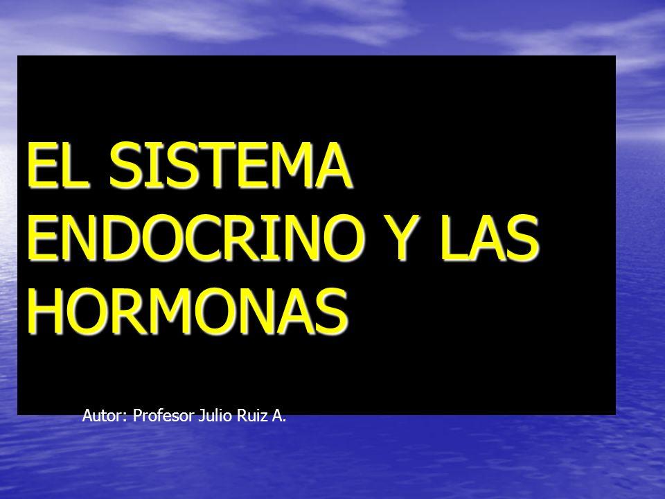AREA CIENCIAS NIVEL II MEDIO COMUN PROFESOR: JULIO RUIZ CLASE: SISTEMA ENDOCRINO 2011
