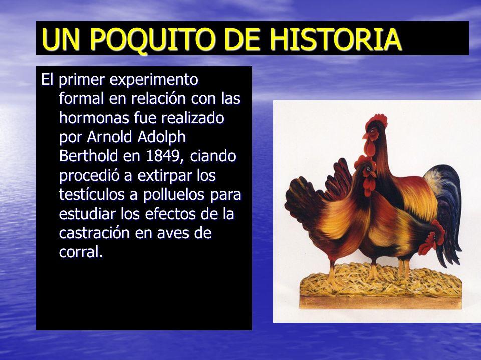 UN POQUITO DE HISTORIA El primer experimento formal en relación con las hormonas fue realizado por Arnold Adolph Berthold en 1849, ciando procedió a extirpar los testículos a polluelos para estudiar los efectos de la castración en aves de corral.
