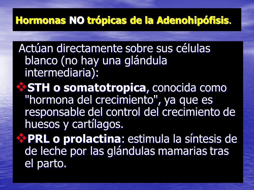 Hormonas trópicas de la Adenohipófisis. Hormonas trópicas: estimulan a otra glándulas: TSH o tirotropica: estimula la secreción de tiroxina por el tir