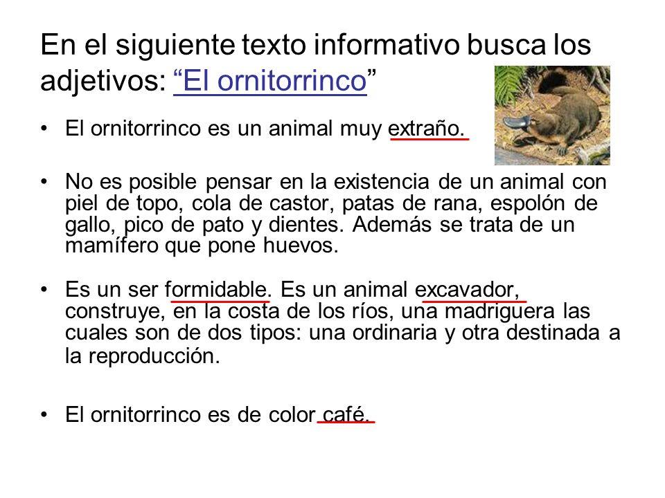 En el siguiente texto informativo busca los adjetivos: El ornitorrinco El ornitorrinco es un animal muy extraño. No es posible pensar en la existencia