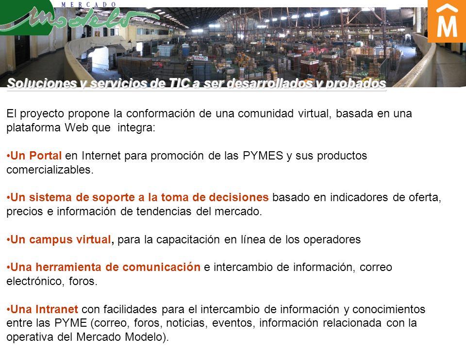 Soluciones y servicios de TIC a ser desarrollados y probados El proyecto propone la conformación de una comunidad virtual, basada en una plataforma Web que integra: Un Portal en Internet para promoción de las PYMES y sus productos comercializables.