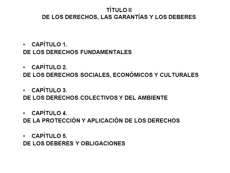 TÍTULO II DE LOS DERECHOS, LAS GARANTÍAS Y LOS DEBERES DE LA PROTECCIÓN Y APLICACIÓN DE LOS DERECHOS ARTÍCULO 84.