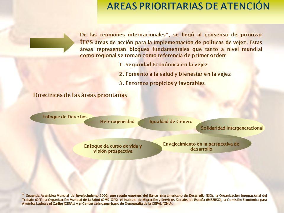 De las reuniones internacionales*, se llegó al consenso de priorizar tres áreas de acción para la implementación de políticas de vejez.