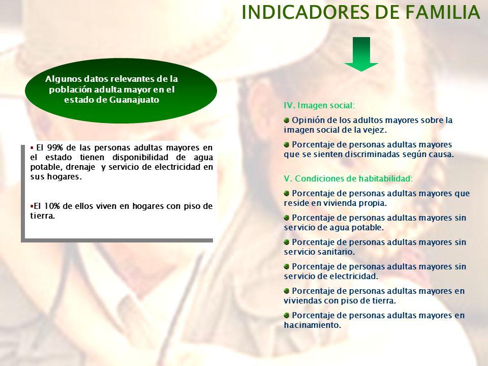 INDICADORES DE FAMILIA IV.