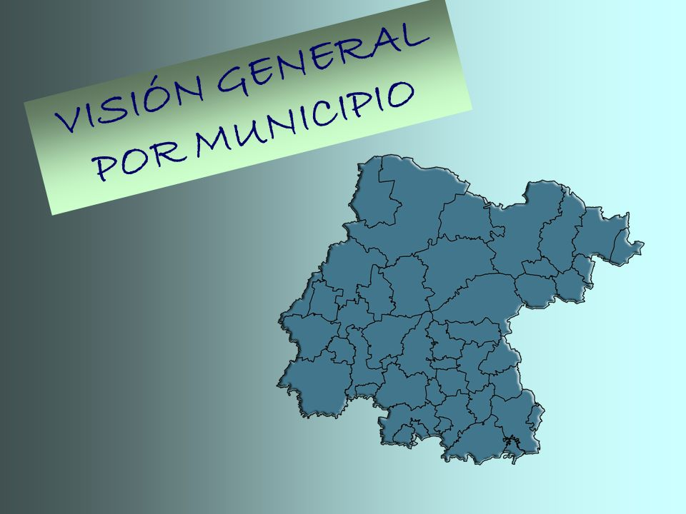 VISIÓN GENERAL POR MUNICIPIO