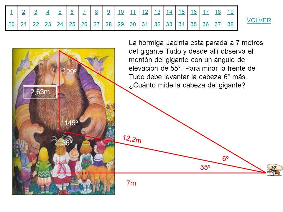 12345678910111213141516171819 20212223242526272829303132333435363738 VOLVER La hormiga Jacinta está parada a 7 metros del gigante Tudo y desde allí ob