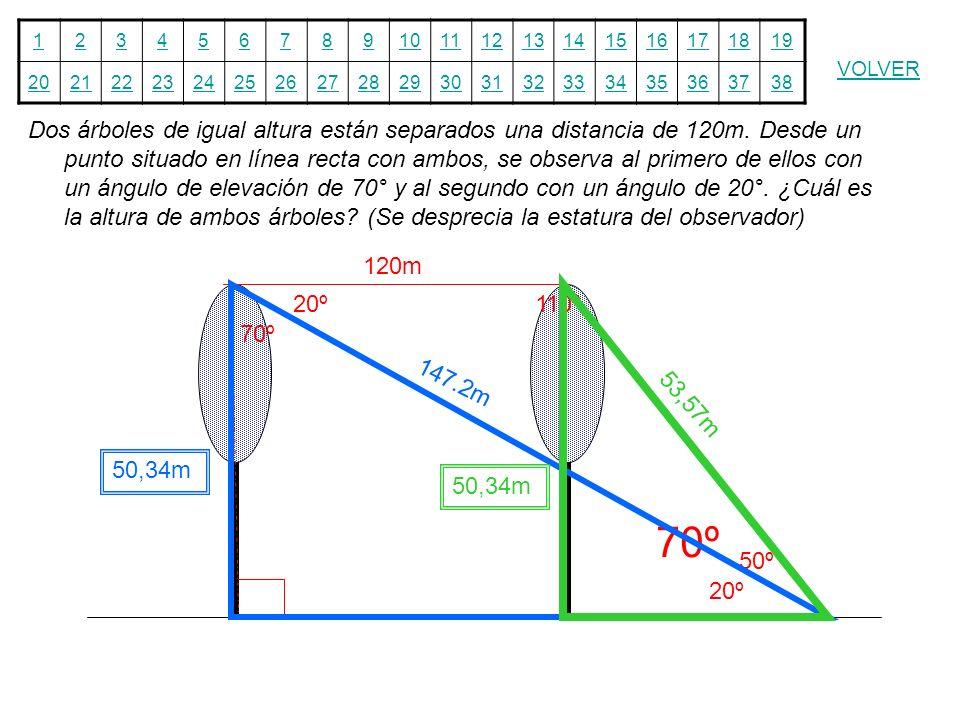 12345678910111213141516171819 20212223242526272829303132333435363738 VOLVER Dos árboles de igual altura están separados una distancia de 120m. Desde u