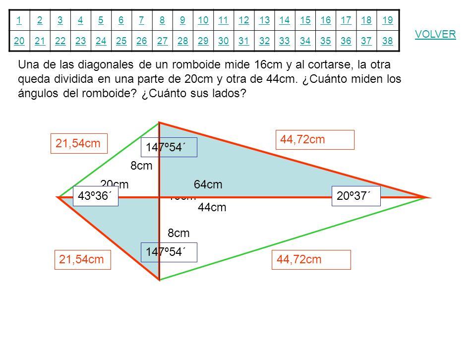 12345678910111213141516171819 20212223242526272829303132333435363738 VOLVER Una de las diagonales de un romboide mide 16cm y al cortarse, la otra qued