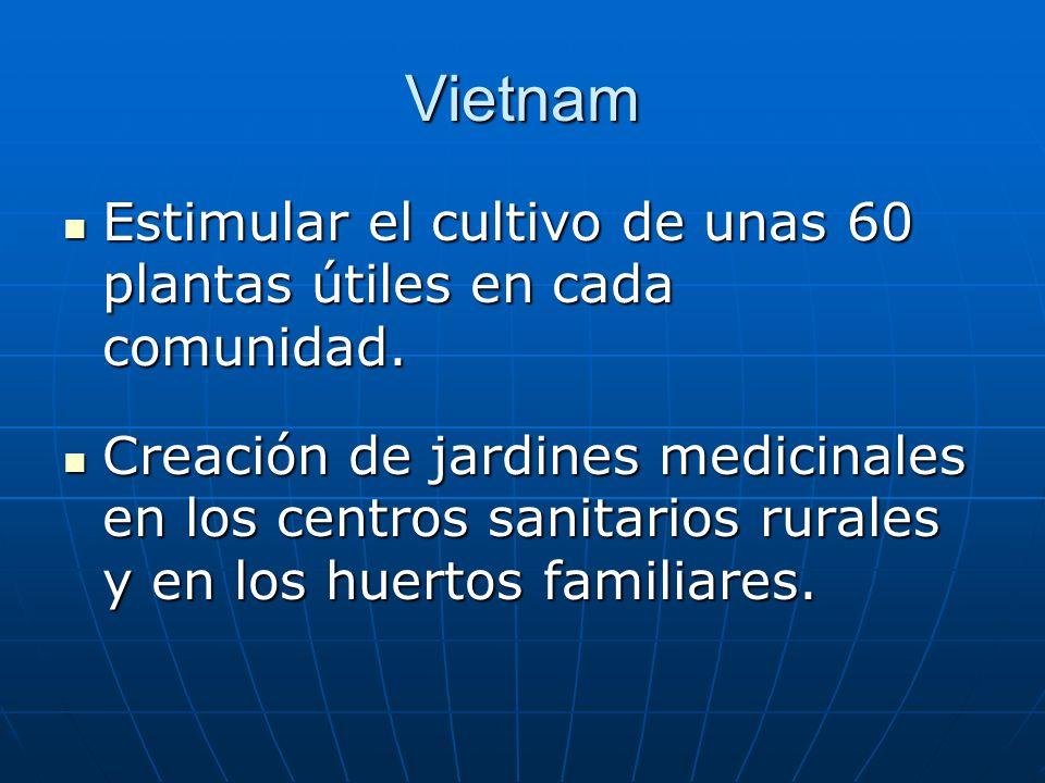 La experiencia de Vietnam: Recuperación de los conocimientos tradicionales y su estudio en los institutos de medicina tradicional, farmacia y materia médica.