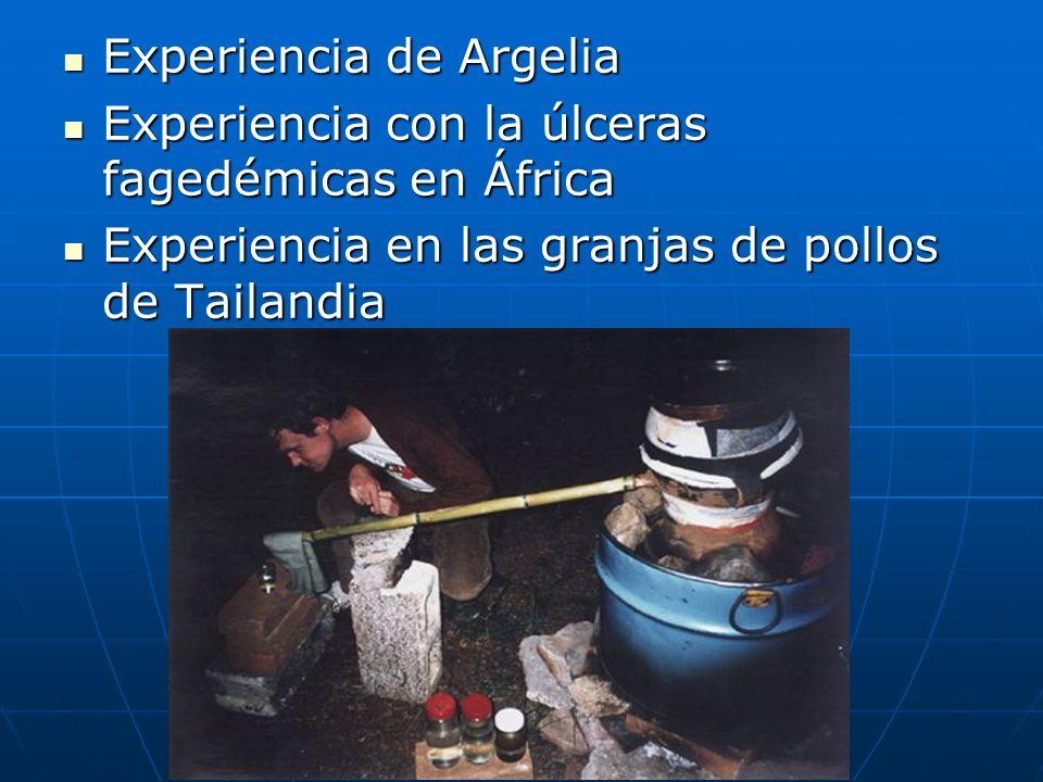 La experiencia de los MAPN El conocimiento y respeto de las diversidades culturales como condición previa para poder ayudar.