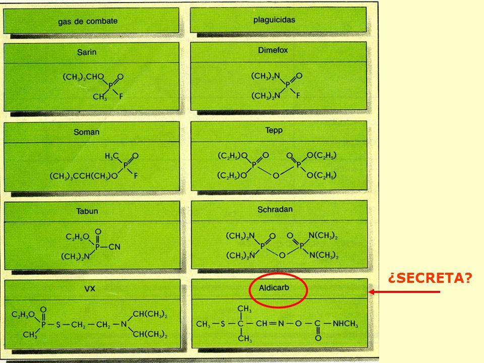 ¿SECRETA?: Isocianato de Metilo