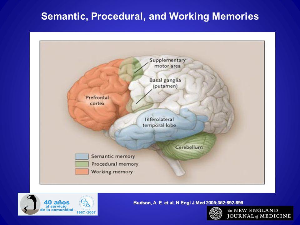 Budson, A. E. et al. N Engl J Med 2005;352:692-699 Semantic, Procedural, and Working Memories