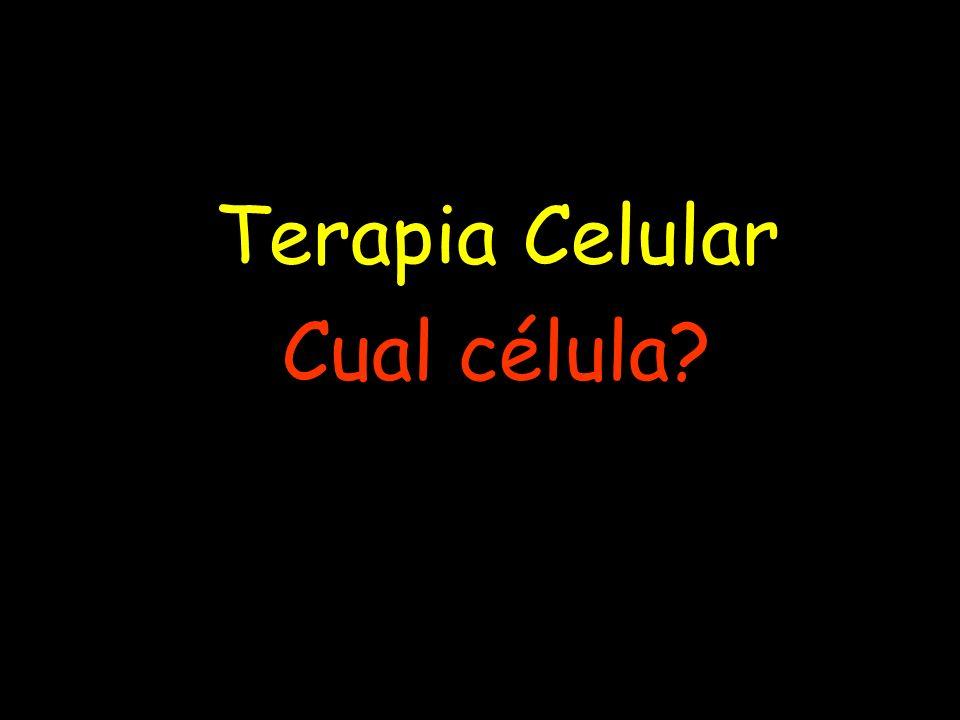 Terapia Celular Cual célula?
