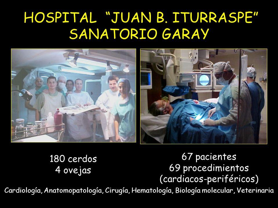 HOSPITAL JUAN B. ITURRASPE SANATORIO GARAY Cardiología, Anatomopatología, Cirugía, Hematología, Biología molecular, Veterinaria 180 cerdos 4 ovejas 67