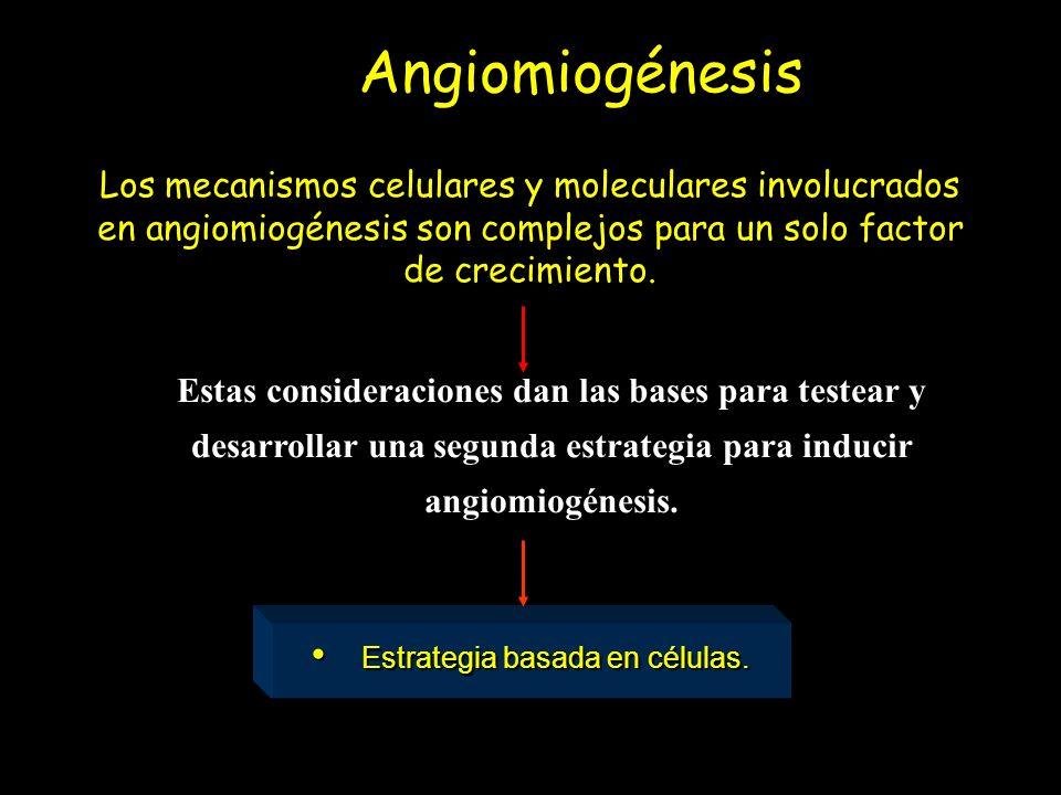 Células de músculo esquelético (mioblasto esquelético) Células stem/progenitoras de médula ósea (adultas) Células stem embrionarias Angiomiogénesis De donde obtener células Mioblasto esqueléticoCélulas de MO adultas Células stem embrionarias